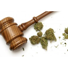 Judge Allows Murderer To Use Medical Marijuana To Stay Calm